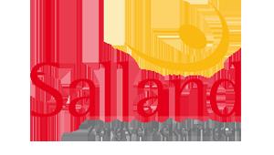 sponsor-Salland_Zorgverzekeringen-sidebar300x150