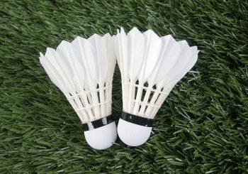 Competities Badminton Nederland seizoen 2019/2020 worden niet uitgespeeld